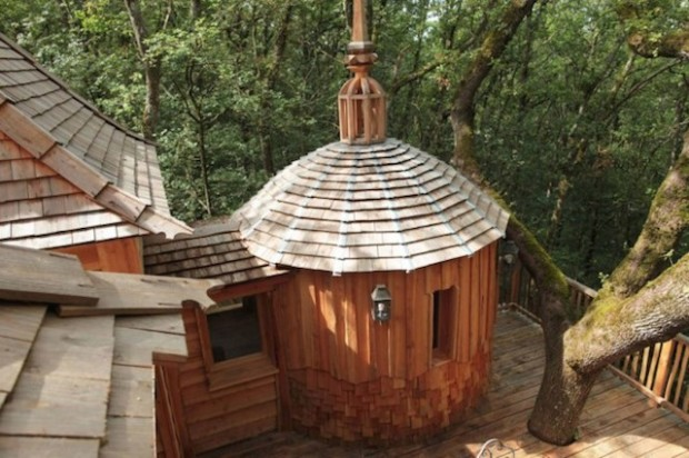 The-Coolest-Tree-House-3