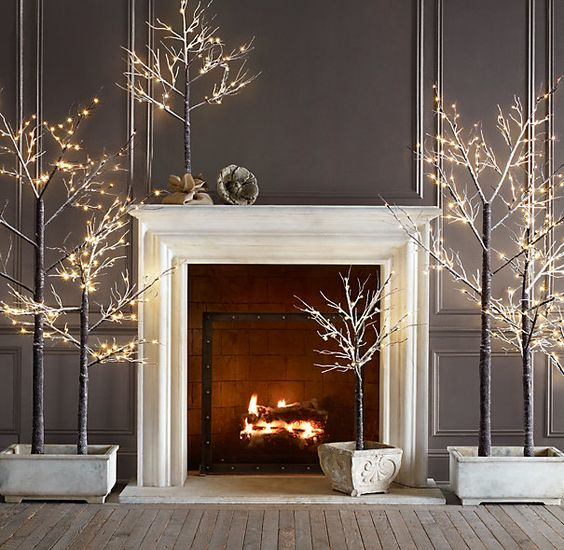 11-a-family-of-lit-up-trees-with-no-decor