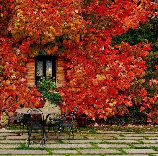 cozy-fall-patio-decor-ideas-38-554x548