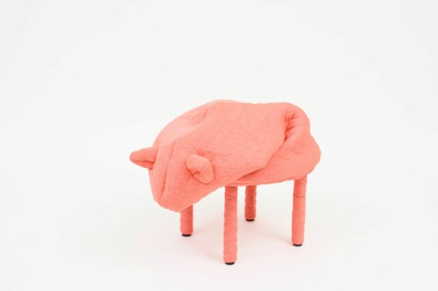 funny-petstools-cozy-companions-and-functional-furniture-5