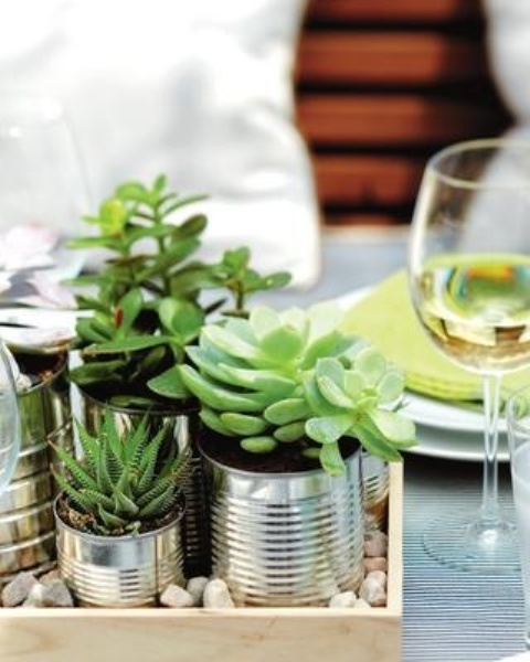 how-to-decorate-with-succulents-examples-1