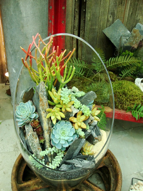 how-to-decorate-with-succulents-examples-12