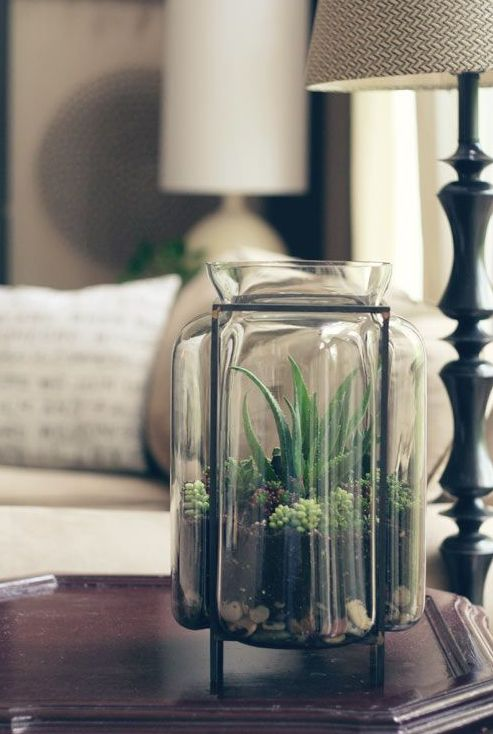 how-to-decorate-with-succulents-examples-20