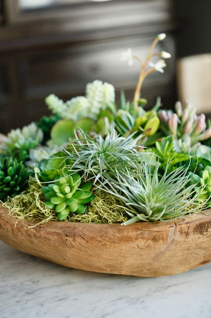 how-to-decorate-with-succulents-examples-23