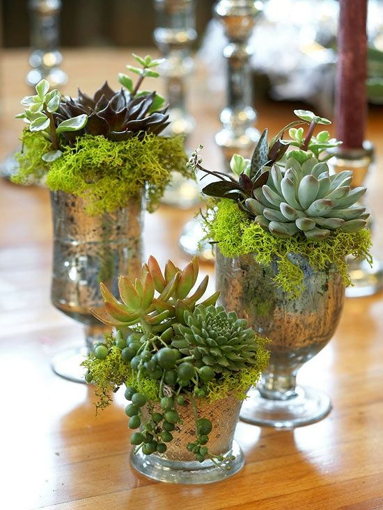 how-to-decorate-with-succulents-examples-28
