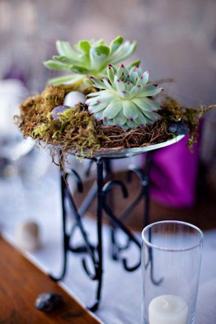 how-to-decorate-with-succulents-examples-30