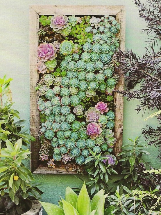 how-to-decorate-with-succulents-examples-7-554x736