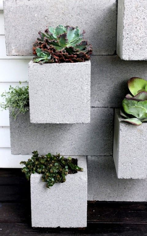how-to-decorate-with-succulents-examples-9