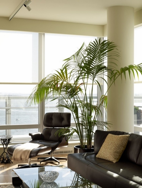 modern-living-room-design-ideas-indoor-plants-benefits