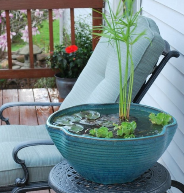 Mini-pond-balcony-design-select-plant-water-lilies