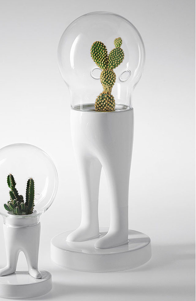 Funny-Creative-Terrariums-7