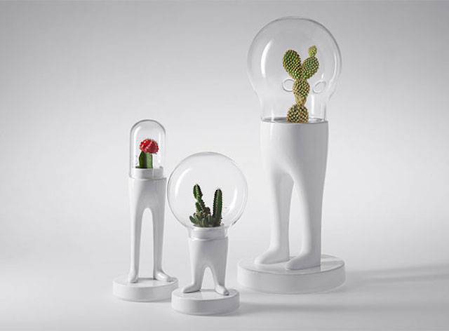 Funny-Creative-Terrariums-8