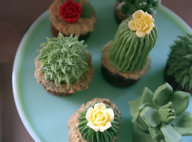 House-Plant-Cactus-Cupcakes-2