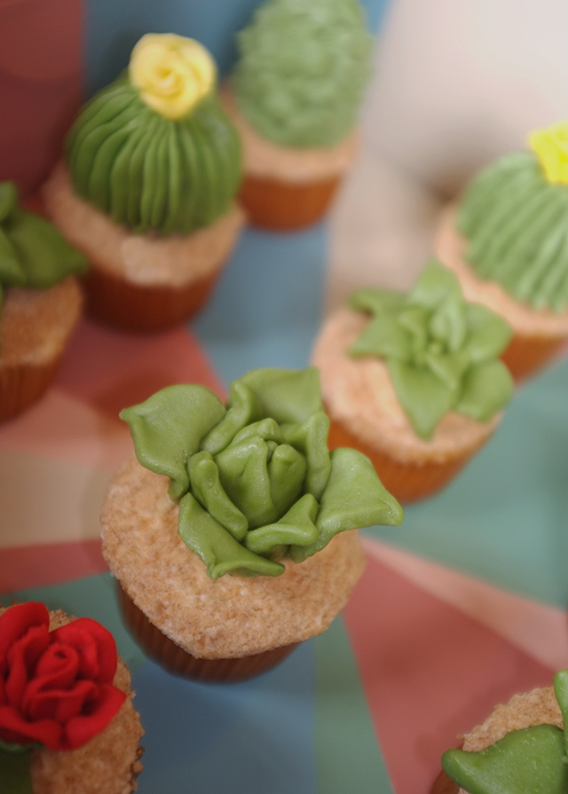 House-Plant-Cactus-Cupcakes-8