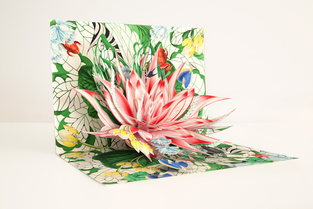 Hand-Crafted-Pop-Up-Books-6