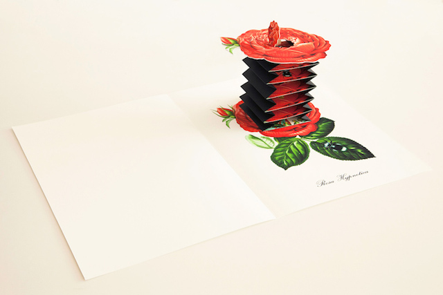 Hand-Crafted-Pop-Up-Books-8