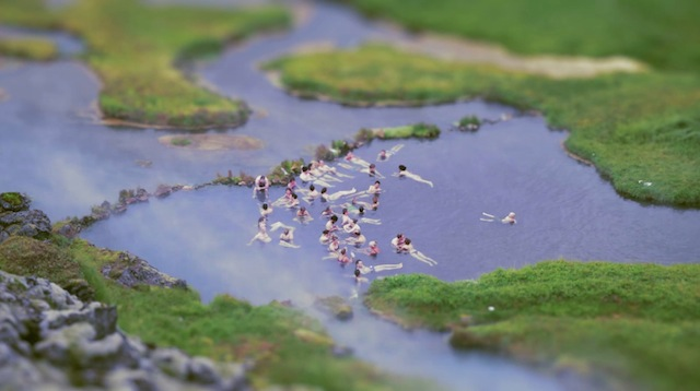 The-Little-Nordics-Life-in-miniature-0