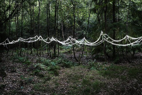 The-Art-of-Forest_3