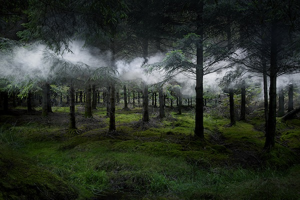 The-Art-of-Forest_6