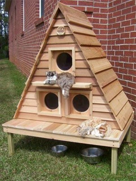 awesome-creative-pet-homes-for-any-type-of-interior-13