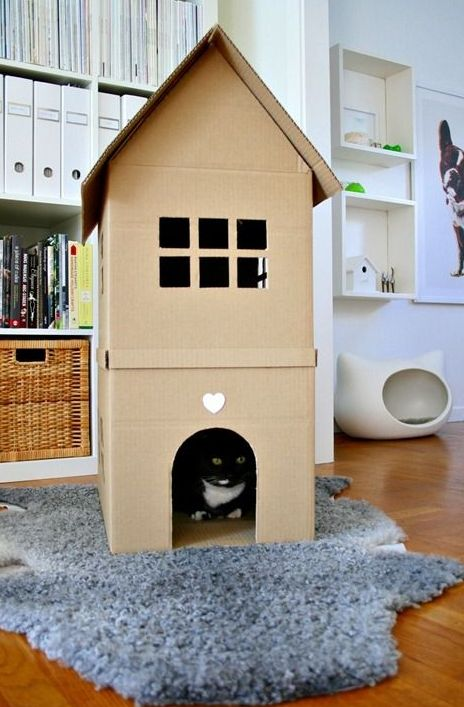 awesome-creative-pet-homes-for-any-type-of-interior-22