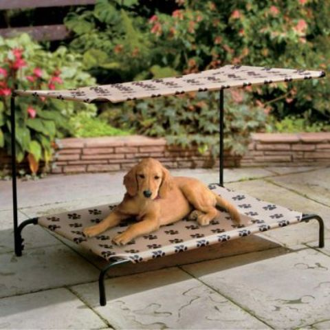 awesome-dog-beds-for-indoors-and-outdoors-18