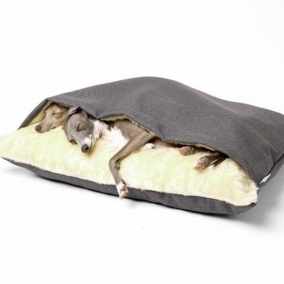 awesome-dog-beds-for-indoors-and-outdoors-2-554x554
