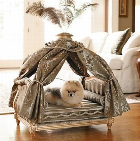 awesome-dog-beds-for-indoors-and-outdoors-25