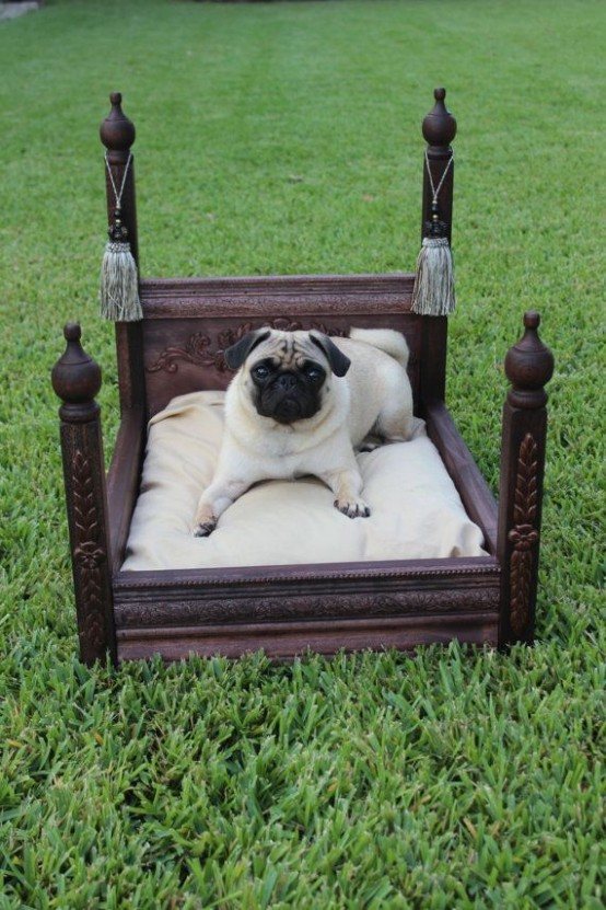 awesome-dog-beds-for-indoors-and-outdoors-27-554x831