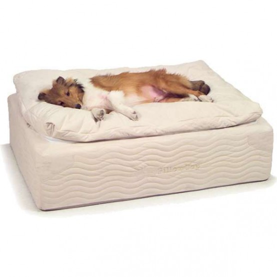 awesome-dog-beds-for-indoors-and-outdoors-29-554x554