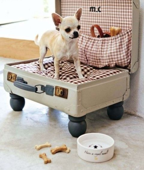 awesome-dog-beds-for-indoors-and-outdoors-3