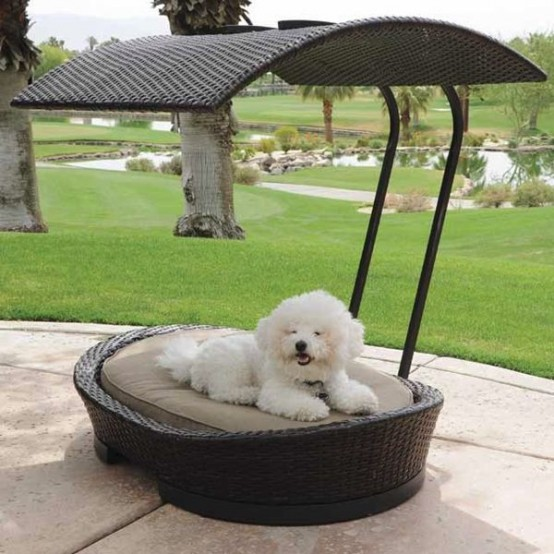 awesome-dog-beds-for-indoors-and-outdoors-31-554x554