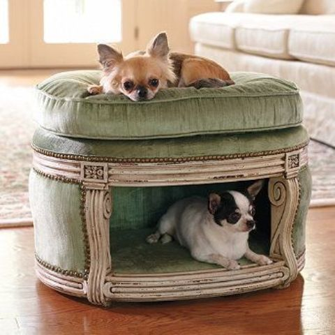 awesome-dog-beds-for-indoors-and-outdoors-32