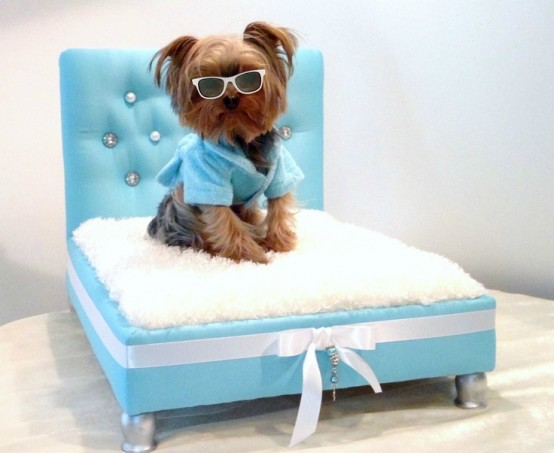 awesome-dog-beds-for-indoors-and-outdoors-33-554x453