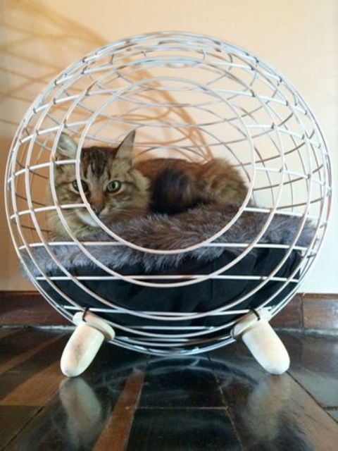 creative-and-cozy-cat-beds-13
