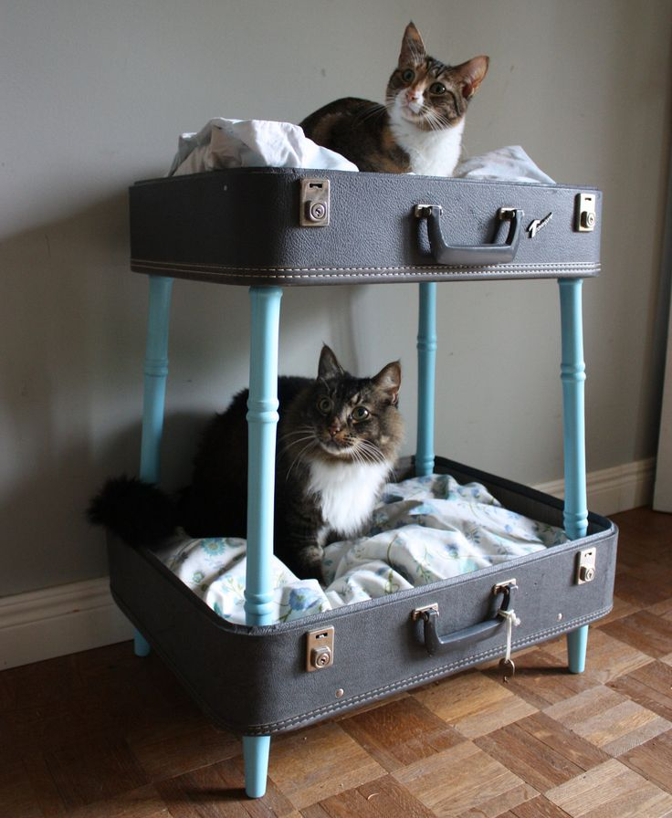 creative-and-cozy-cat-beds-14