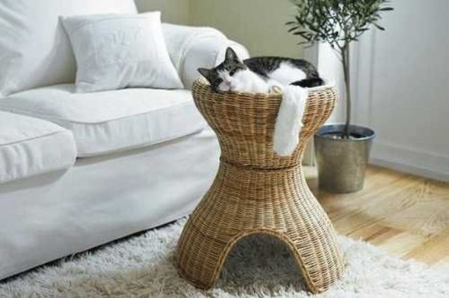 creative-and-cozy-cat-beds-16