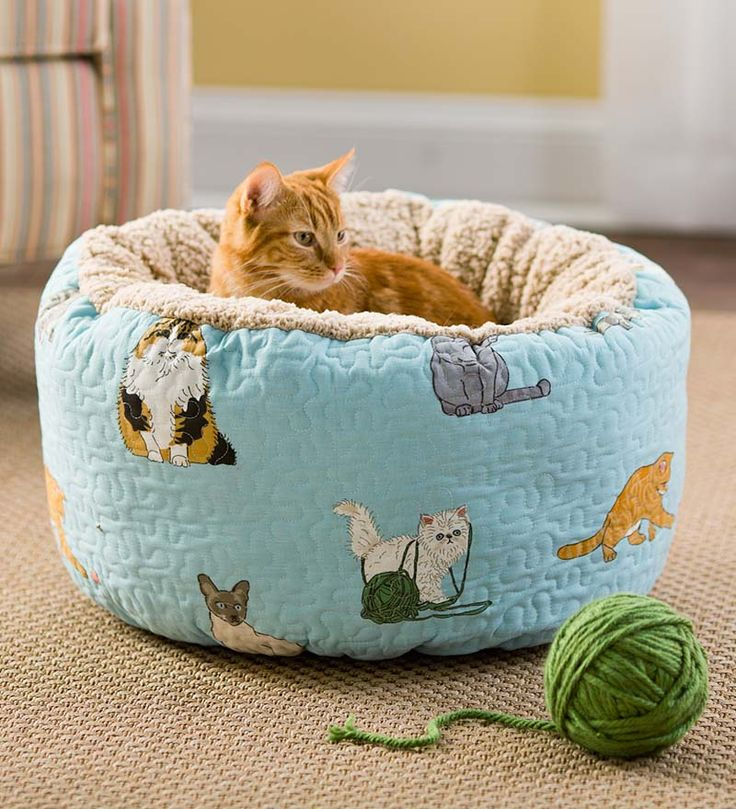 creative-and-cozy-cat-beds-17