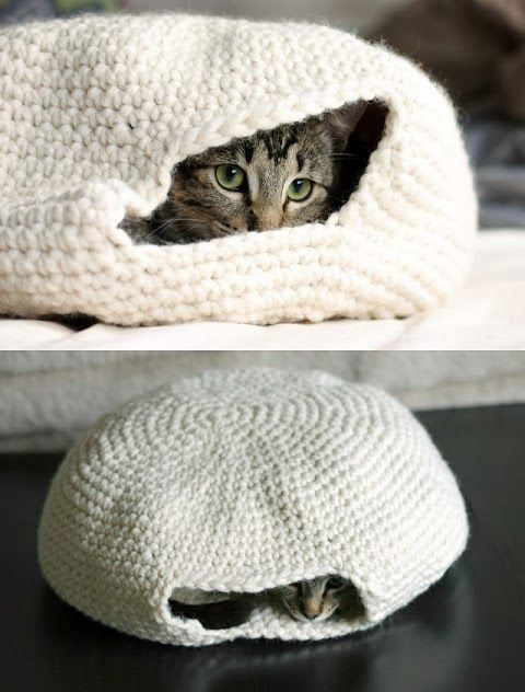 creative-and-cozy-cat-beds-2