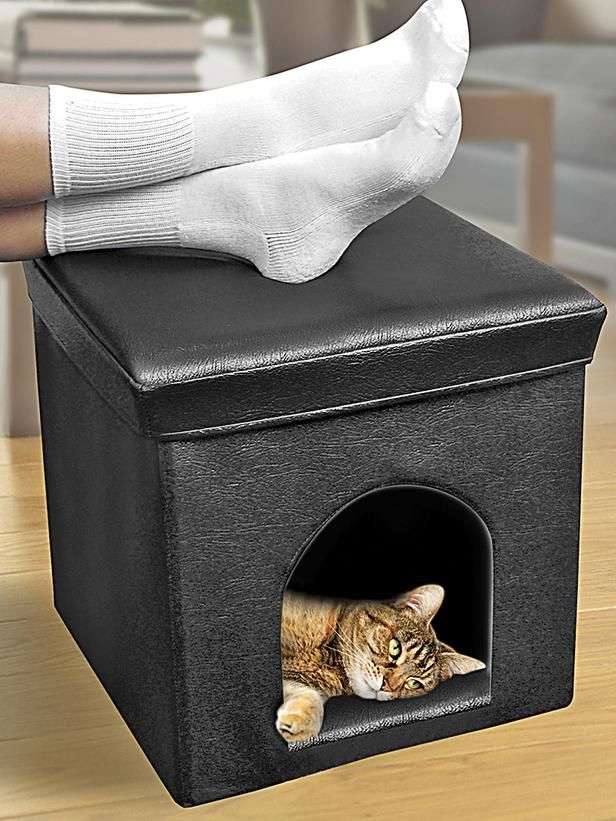 creative-and-cozy-cat-beds-22