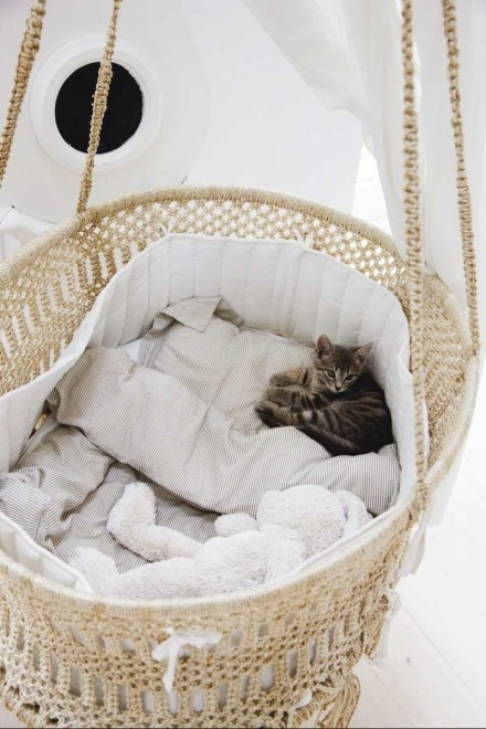 creative-and-cozy-cat-beds-23
