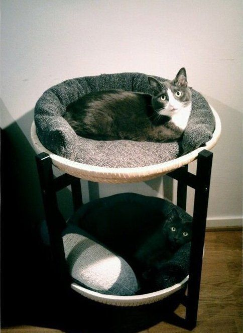 creative-and-cozy-cat-beds-3