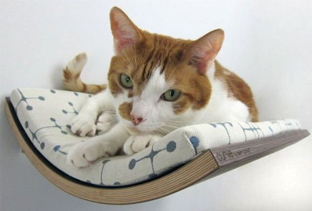 creative-and-cozy-cat-beds-5