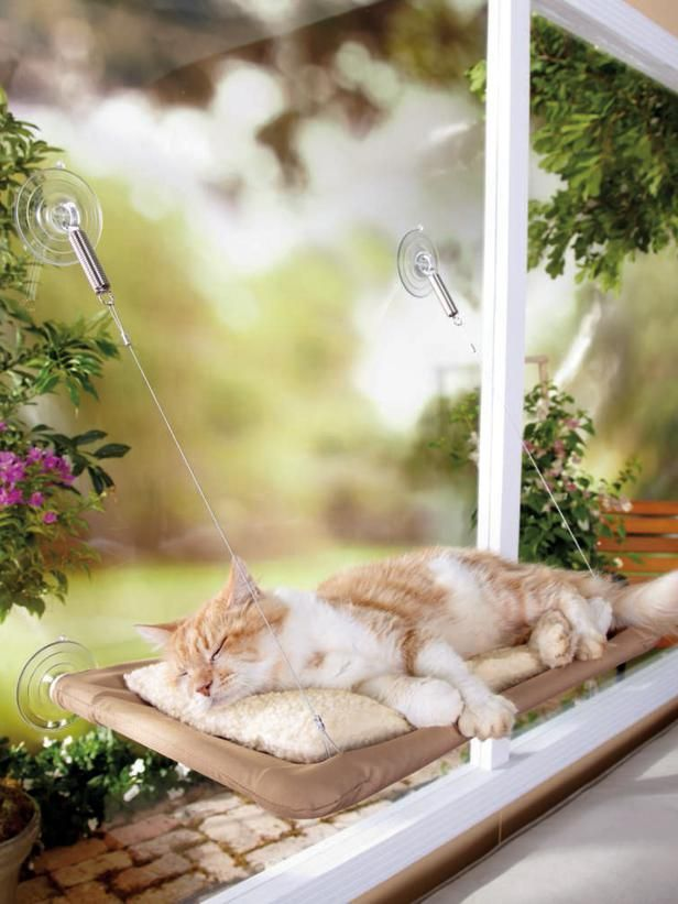 creative-and-cozy-cat-beds-8