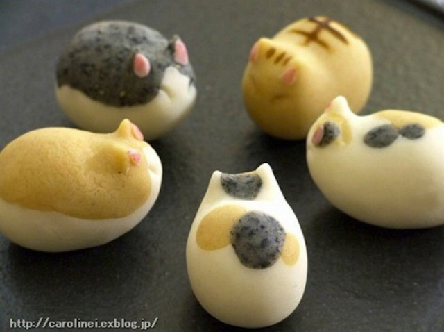 catsweets-7-640x478