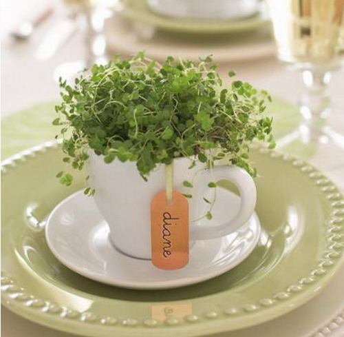 rustic-veggies-and-herbs-tablescape-ideas-18