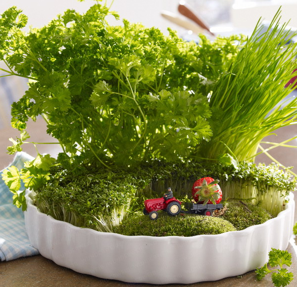 rustic-veggies-and-herbs-tablescape-ideas-23