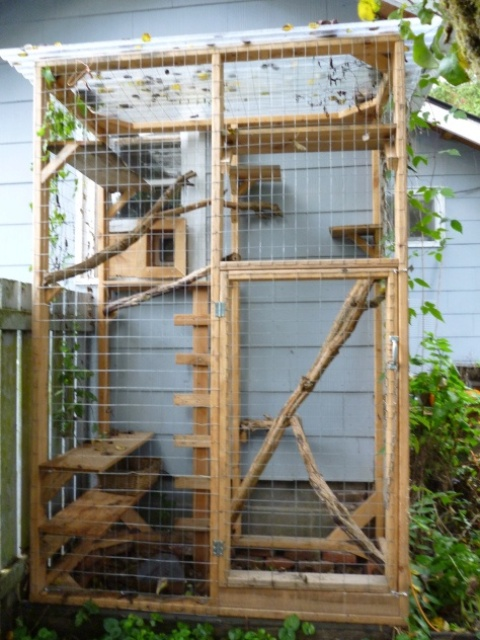 safe-and-smart-organized-outdoor-cat-areas-1