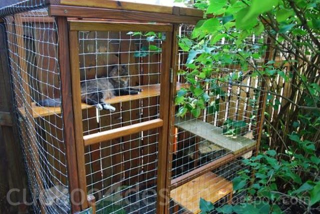 safe-and-smart-organized-outdoor-cat-areas-16