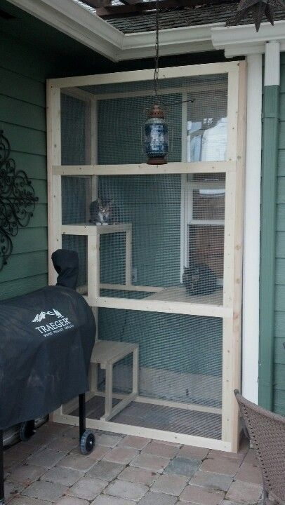 safe-and-smart-organized-outdoor-cat-areas-2